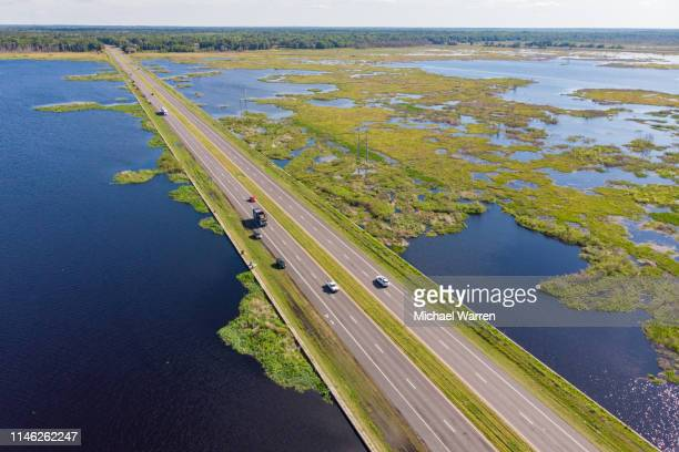 paynes prairie gainesville, fl - gainesville florida stock photos and pictures