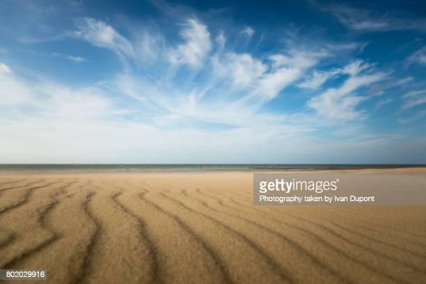 Paysage du littoral au début de l'été