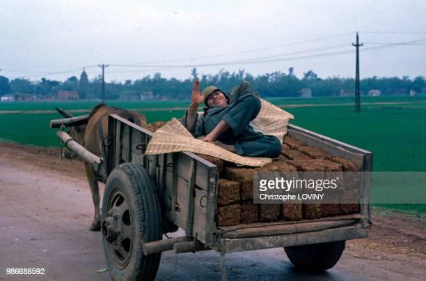 Paysan allongé dans sa charrette dans la campagne vietnamienne en octobre 1989 Viet nam