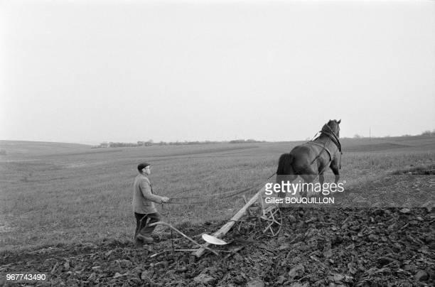 Paysan labourant son champs avec son cheval dans le région de Cracovie le 17 mai 1979 Pologne
