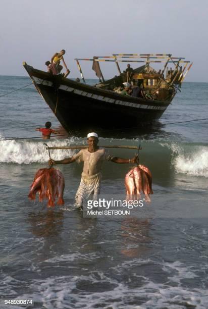 Pêcheur à Al Hudaydah au Yémen en mars 1983