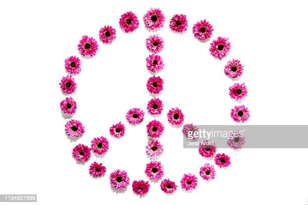peace sign, flowers arranged in peace sign, peace symbol, flower power, pink daisies on white background, flowers on white background - symbol stock pictures, royalty-free photos & images
