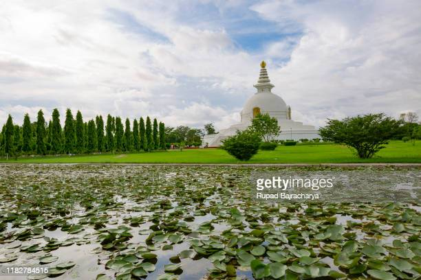 peace stupa - lumbini nepal stock pictures, royalty-free photos & images