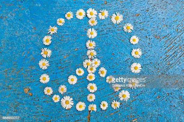 Peace Symbol Made Up Of Daisy Flowers