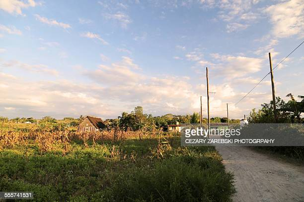 peaceful and rural moods of vinales - sturbridge stock photos and pictures