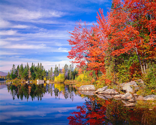 Peaceful colorful autumn pond