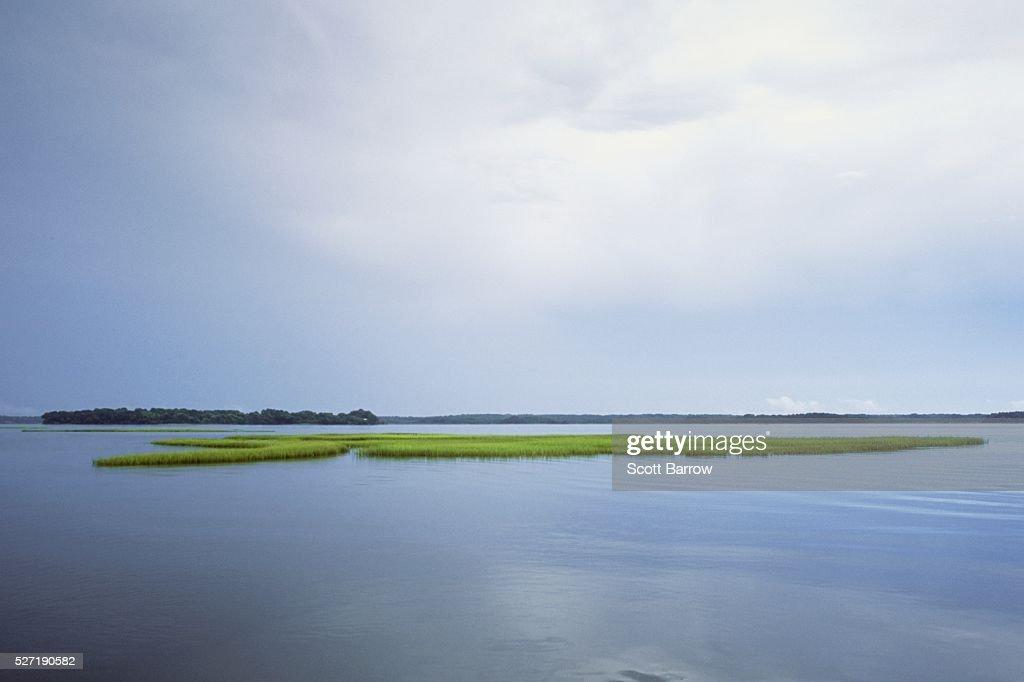 Peaceful lake : Stock Photo