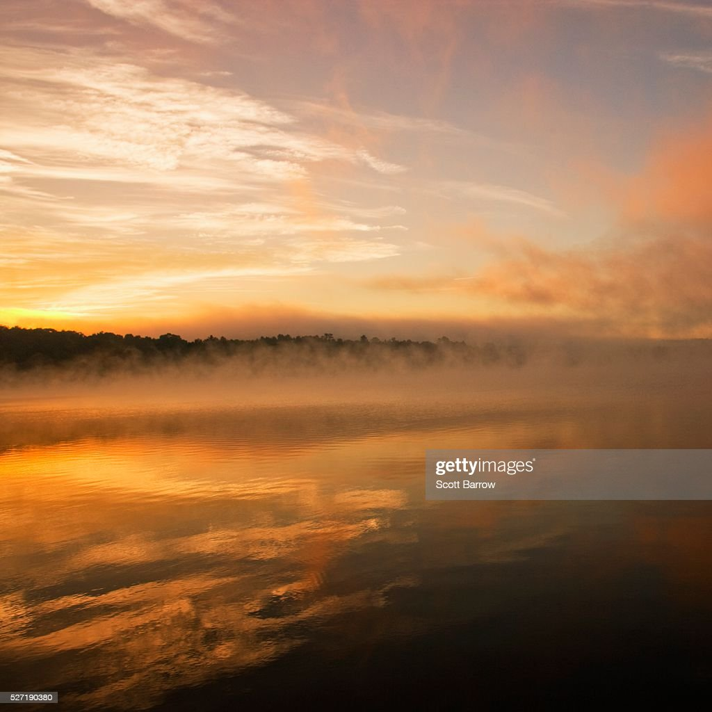 Peaceful misty lake : Stock Photo