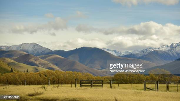 Peaceful nature view of grassland farm with amazing snow-capped mountain range background