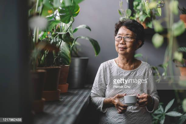 peaceful senior asian chinese woman having coffee at home chillling - asian and indian ethnicities stock pictures, royalty-free photos & images
