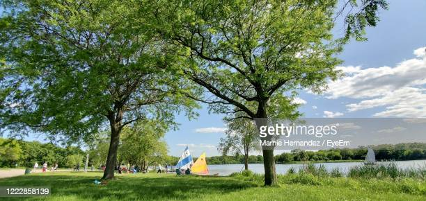 a peaceful summer scene at a lake shore with sailboats - groupe moyen de personnes photos et images de collection