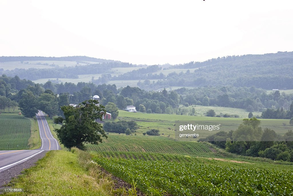 Peaceful Valley with Farm on Hazy Summer Evening : Stock Photo