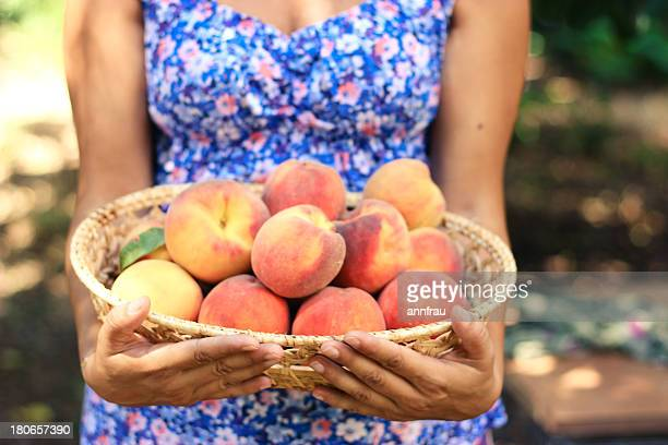 peaches - annfrau stock pictures, royalty-free photos & images