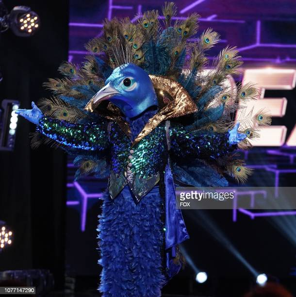 Peacock in the Mask On Face Off series premiere of THE MASKED SINGER airing Wednesday Jan 2 on FOX