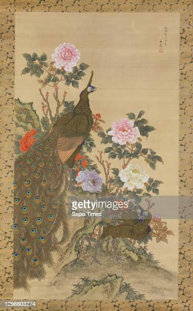 Peacocks and Peonies, Edo period Japan, Hanging scroll; ink and color on silk, Image: 60 1/4 × 34 3/4 in. , Paintings, Tani Buncho , This pair of...