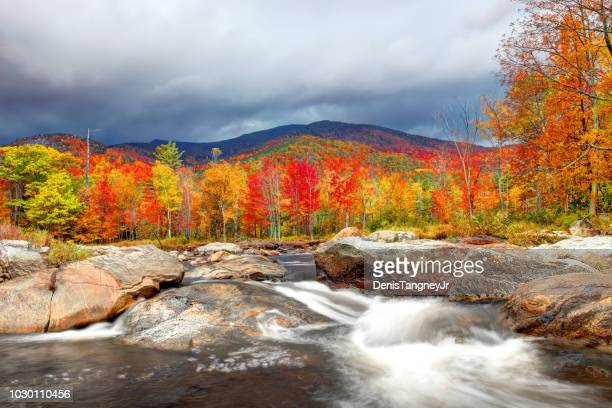 peak autumn foliage in the adirondacks region of new york - four seasons stock pictures, royalty-free photos & images