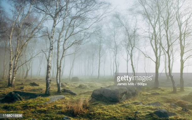 peak district morning - rock stock pictures, royalty-free photos & images