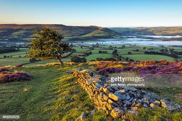 peak district morning view, hope valley, england. - england stock-fotos und bilder