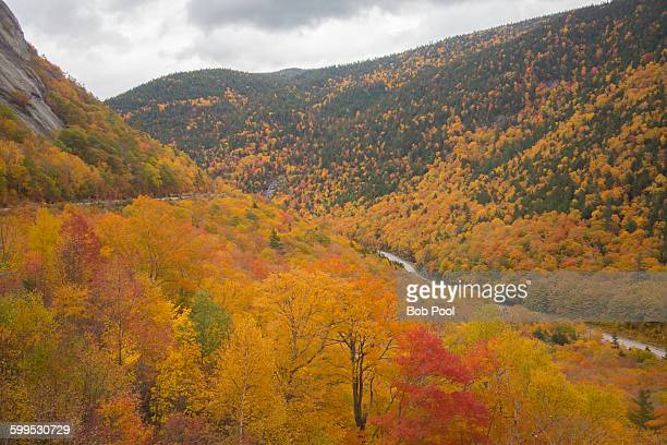 peak fall color surrounding crawford notch highway - crawford notch stock pictures, royalty-free photos & images