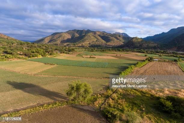 peanut and vegetable family farmlands in mizque, bolivia at sunset - cochabamba stock-fotos und bilder