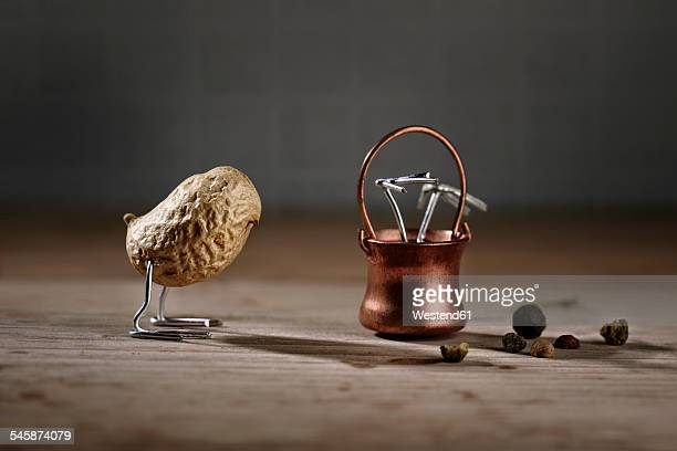 Peanut bird looking at fellow bird in cauldron
