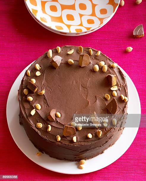 Peanut butter and fudge butter cake