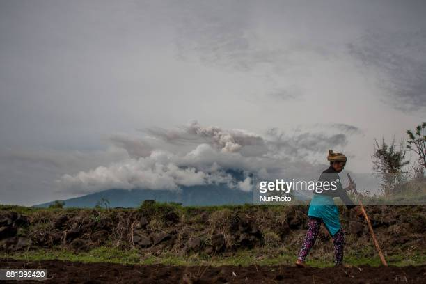Peanut farmers planted seeds during the eruption of Mount Agung took place on 29 November 2017 in Karangasem regency Bali Indonesia Ngurah Rai...