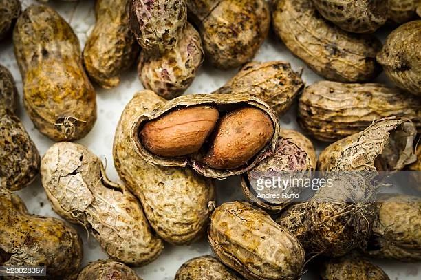Peanut ground nuts