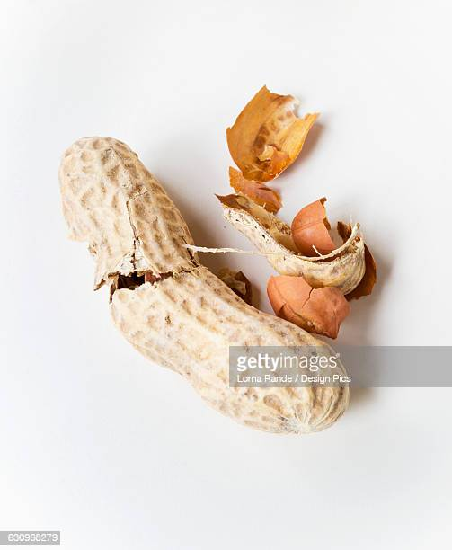 Peanuts and shell on a white background