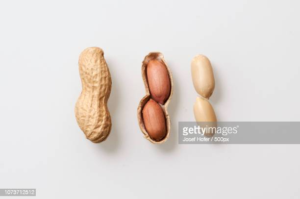 peanuts as models - nuts models stock photos and pictures