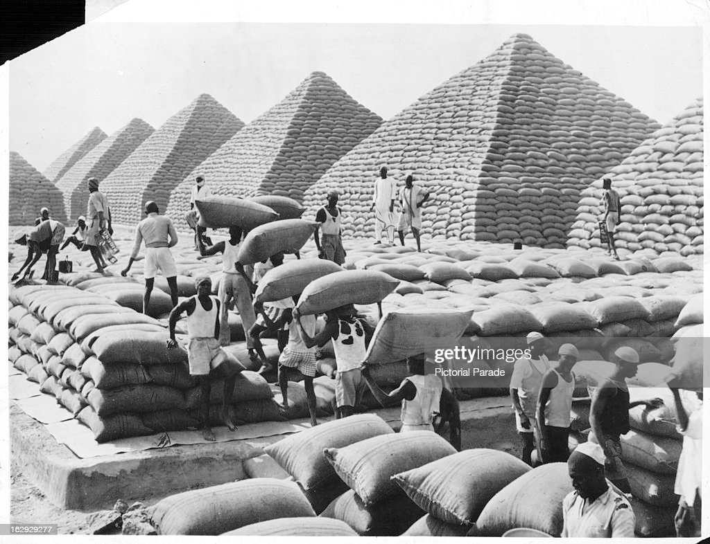 Peanuts, bagged and ready for transport, are stacked in pyramids at... News  Photo - Getty Images