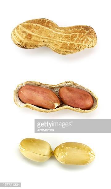amendoins isolada no branco - casca de fruta - fotografias e filmes do acervo