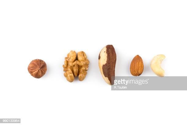 peanuts, walnuts, almonds, hazelnuts, brazil and cashews nuts mixed together - brazil nut fotografías e imágenes de stock
