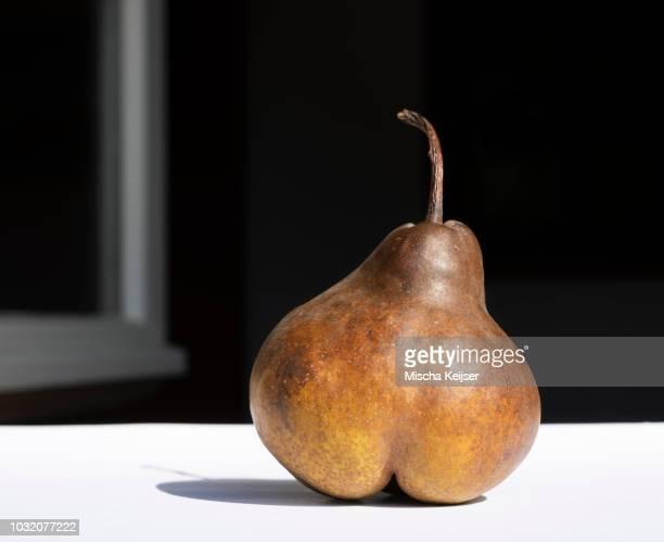 Pear in morning sun