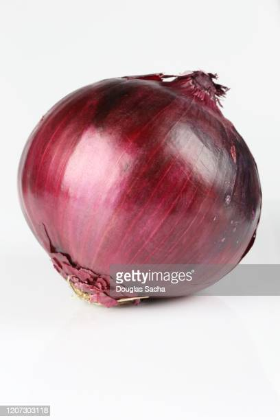 pear red danjou onion (pyrus-pyrifolia) - spanish onion stock pictures, royalty-free photos & images