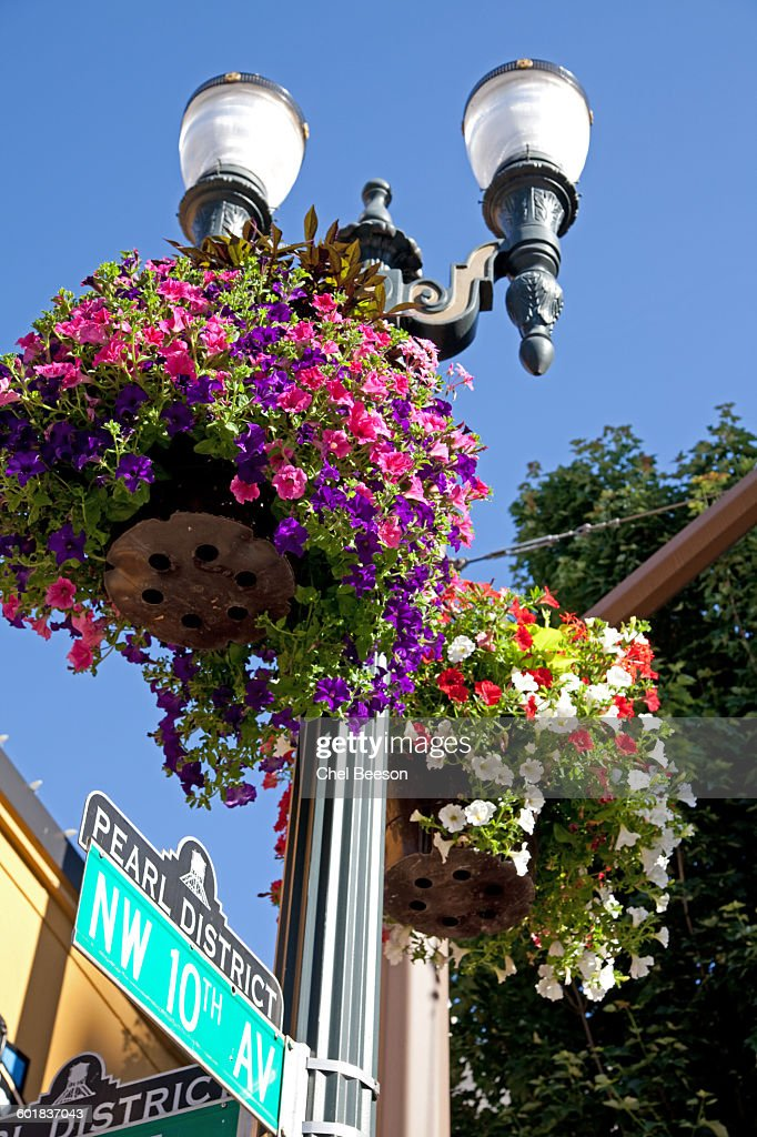 pearl district portland flowers street sign stock photo getty images