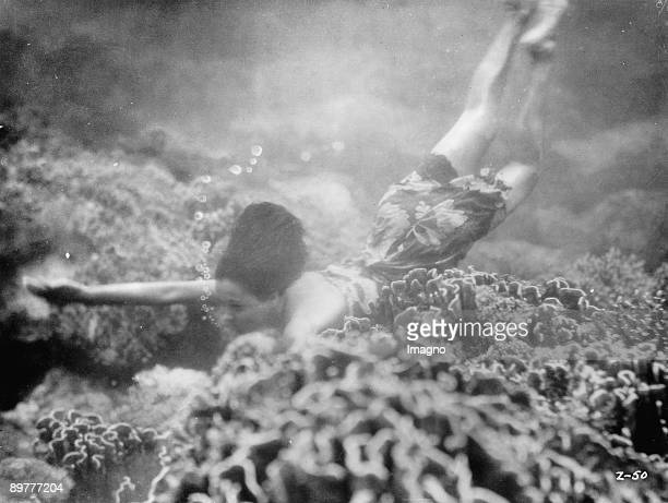 Pearl diver at work Photograph Around 1930