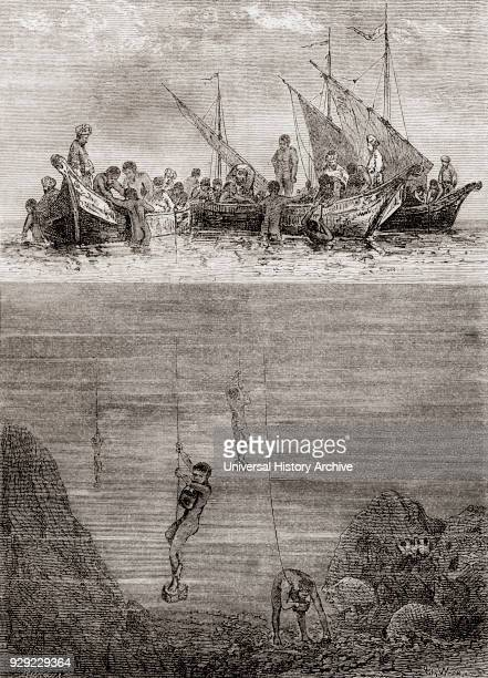 Pearl divers off the coast of the Island of Ceylon in the 18th century From Les Merveilles de la Science published c 1870