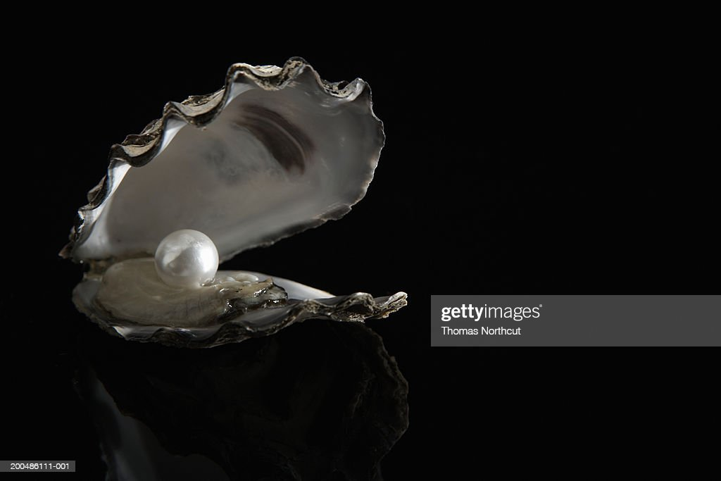 Pearl inside oyster shell : Stock Photo