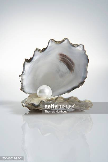 Pearls Stock Photos And Pictures Getty Images