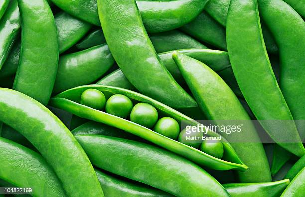 peas and pea pods - close up stockfoto's en -beelden
