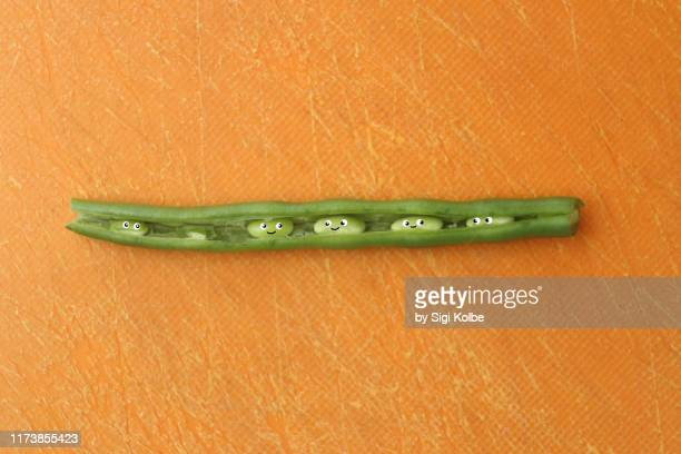 peas in a pod - erongo stock photos and pictures