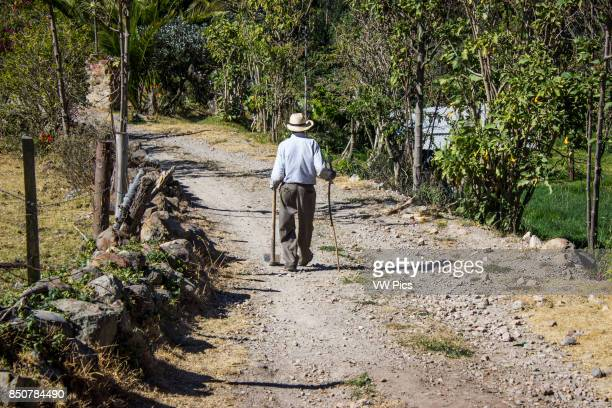A peasant walks on a sunny day through the streets of his village