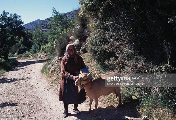 Peasant with a goat near Lasithi or Lassithi Crete Greece