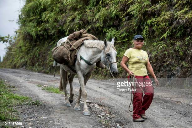 A peasant woman pulls a horse in the emerald mining area Colombia produces one of the worlds finest and most looked for emeralds