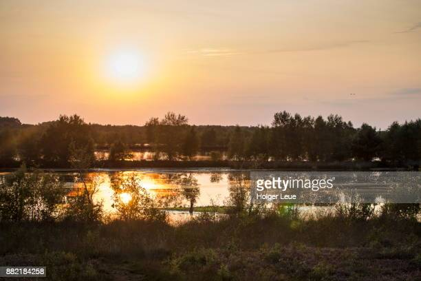 peat bog and lake at bourtanger moor-bargerveen international nature park at sunset, near twist, emsland, lower saxony, germany - national park stock pictures, royalty-free photos & images