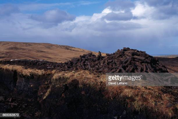 Peat bog landscape in the Connemara region of County Galway
