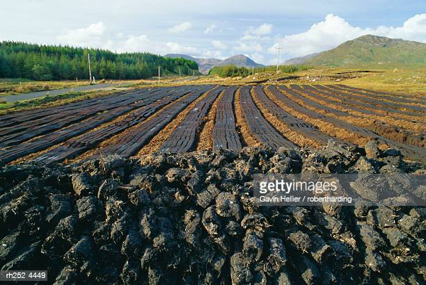 peat 'farming' or cutting, connemara region near clifden, county galway, connacht, republic of ireland (eire), europe - gavin hellier stock pictures, royalty-free photos & images