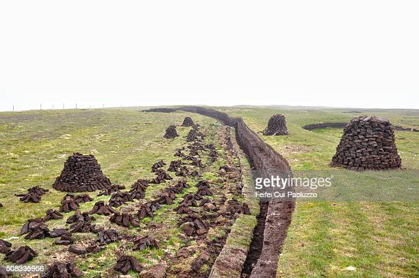 peat field at walls of shetland islands - bog stock photos and pictures