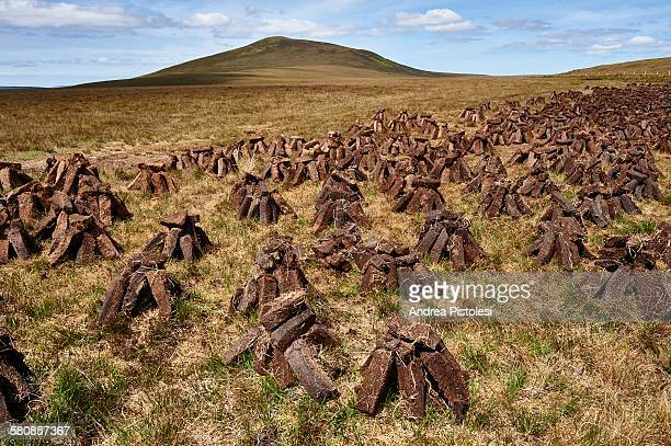peat field, ireland - national park stock pictures, royalty-free photos & images